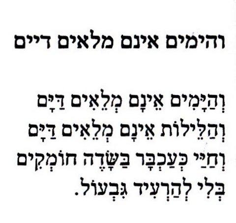 תרגמה: יעל גלוברמן